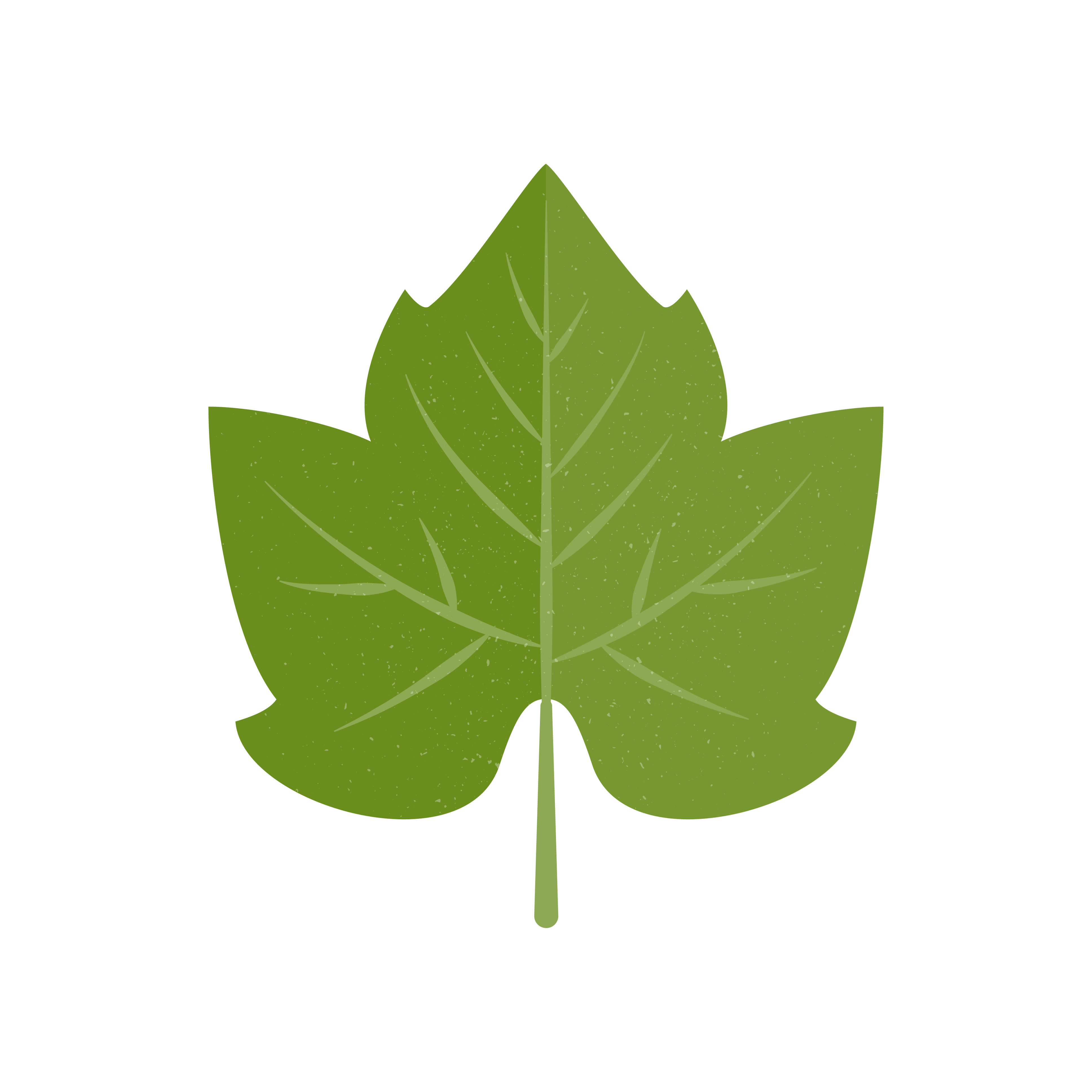 Green icon of grape leaf. Vector illustration isolated on white background.